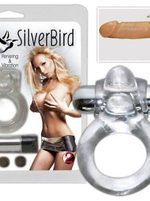 Silverbird Penisrengas OR568384-0